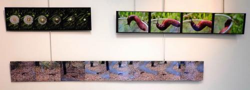 20181201-expo-artsetphotos-JEXM1876-2